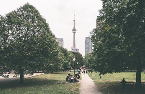 加拿大护照、加拿大枫叶卡、办理加拿大联邦自雇移民条件