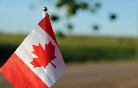 2021加拿大不同移民项目分别适合哪些人群?