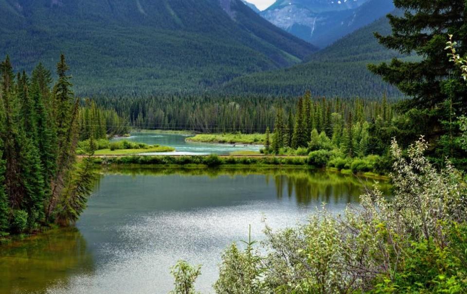 定居加拿大,这些当地风俗和禁忌要当心!