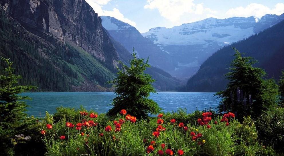 移民加拿大后应该选哪个?Vancouver和Toronto哪个好?