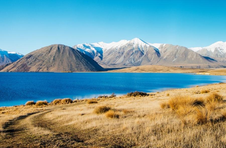 国内普通工薪人士移民新西兰的最优选——留学移民