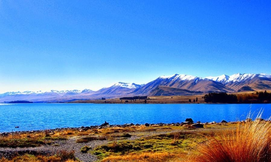去新西兰留学,选择这几个专业更容易移民!
